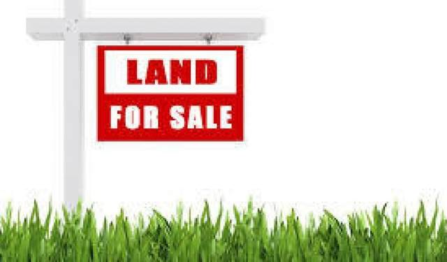 12669 County Rd 27 - Lot10, Springwater, ON L0L 1X0 (#S5369958) :: Royal Lepage Connect