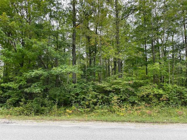 N/A S Tiny Beaches Rd, Tiny, ON L0L 2T0 (#S5394712) :: Royal Lepage Connect
