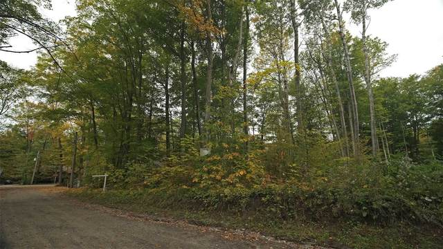 Lt3 Fairlawn Grve, Tiny, ON L9M 0B9 (#S5394955) :: Royal Lepage Connect