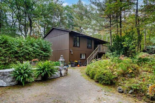 1277 N Tiny Beaches Rd, Tiny, ON L9M 0H3 (#S5407175) :: Royal Lepage Connect