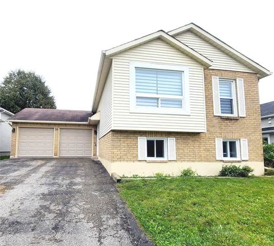 14 Herrell Ave, Barrie, ON L4N 6T5 (#S5412128) :: Royal Lepage Connect