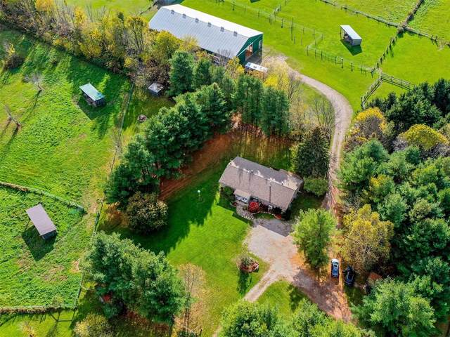 4335 Vasey Rd, Oro-Medonte, ON L0K 2A0 (#S5412198) :: Royal Lepage Connect