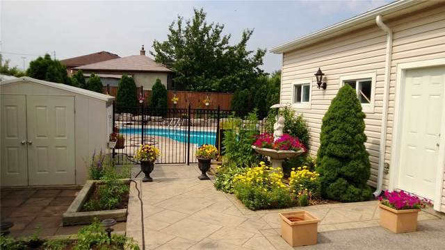 66 Grovedale Ave, Toronto, ON M6L 1Y7 (#W4814193) :: The Ramos Team