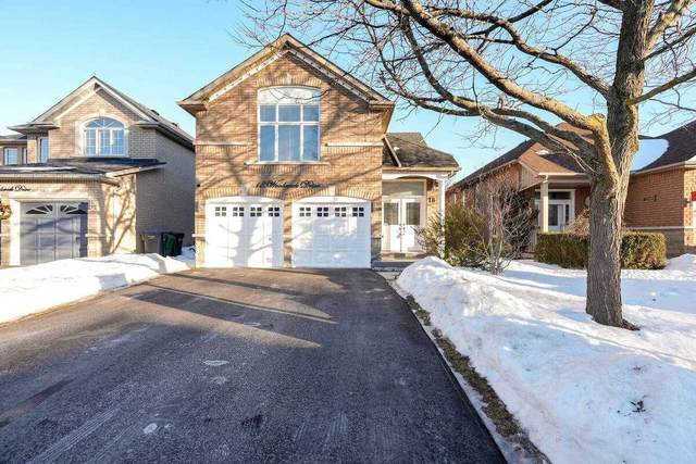 18 Woodcreek Dr, Brampton, ON L6Z 4V5 (MLS #W5134680) :: Forest Hill Real Estate Inc Brokerage Barrie Innisfil Orillia