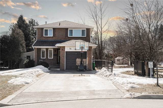36 Aurora Pl, Brampton, ON L6Z 2A8 (MLS #W5139949) :: Forest Hill Real Estate Inc Brokerage Barrie Innisfil Orillia