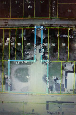 17 E Ottawa St, Havelock-Belmont-Methuen, ON K0L 1Z0 (#X4322830) :: Jacky Man | Remax Ultimate Realty Inc.