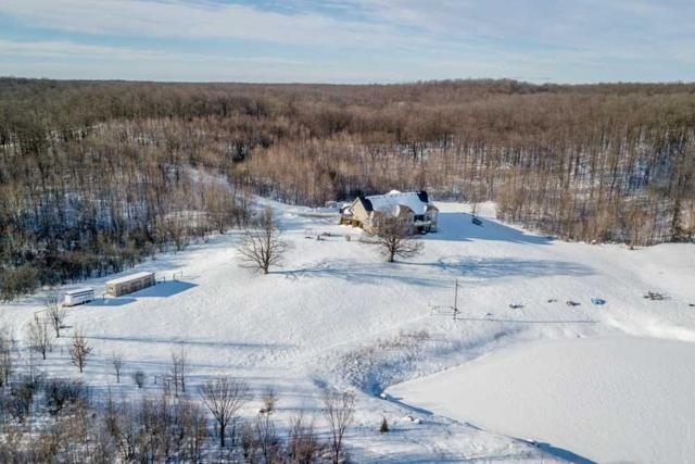 595419 4th Line, Blue Mountains, ON N0H 2E0 (#X4325713) :: Jacky Man   Remax Ultimate Realty Inc.