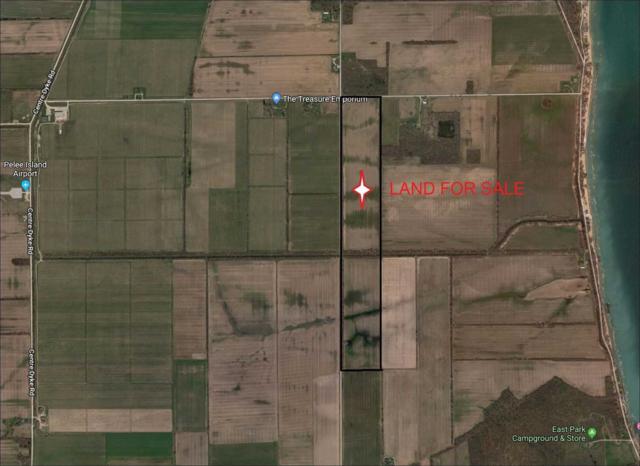 750 Henderson Rd, Pelee, ON N0R 1M0 (#X4338830) :: Jacky Man | Remax Ultimate Realty Inc.
