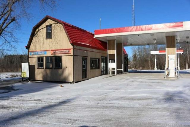 2093 Buckhorn Rd, Smith-Ennismore-Lakefield, ON K0L 2H0 (#X4341452) :: Jacky Man | Remax Ultimate Realty Inc.