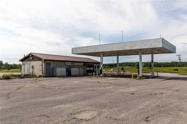 1288 Highway 7 A, Kawartha Lakes, ON L0A 1A0 (#X4354282) :: Jacky Man | Remax Ultimate Realty Inc.