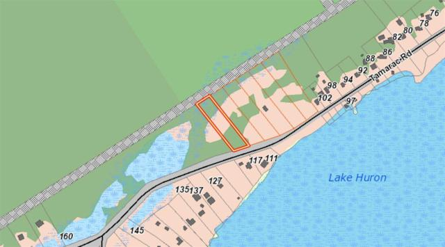 118 Tamarac Rd, Northern Bruce Peninsula, ON N0H 2M0 (#X4356465) :: Jacky Man | Remax Ultimate Realty Inc.