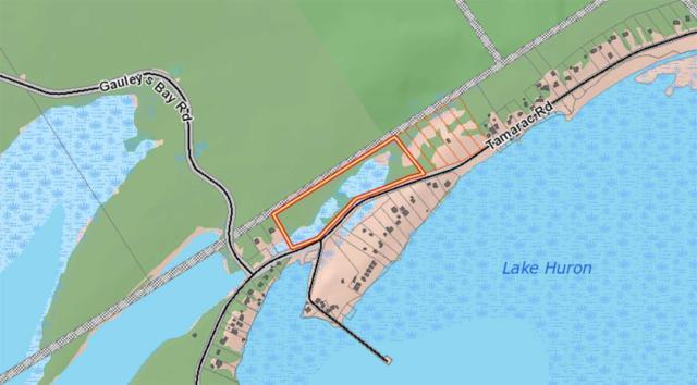 122 Tamarac Rd, Northern Bruce Peninsula, ON N0H 2M0 (#X4356467) :: Jacky Man | Remax Ultimate Realty Inc.
