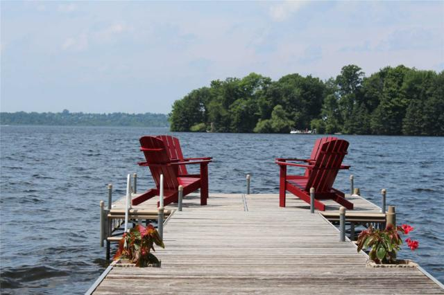 294 Cadigan Rd, Smith-Ennismore-Lakefield, ON K0L 1T0 (#X4360463) :: Jacky Man | Remax Ultimate Realty Inc.