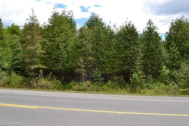 0 Highway 36 Rd, Galway-Cavendish And Harvey, ON K0M 1A0 (#X4363380) :: Jacky Man | Remax Ultimate Realty Inc.