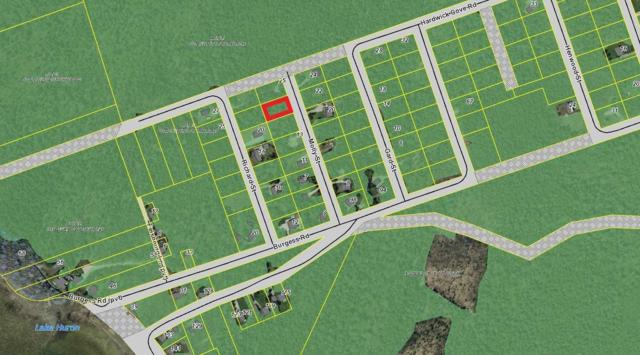 Part Lt 35, Concession 3 Wbr, Northern Bruce Peninsula, ON N0H 1W0 (#X4370972) :: Jacky Man | Remax Ultimate Realty Inc.