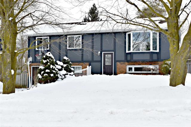 461 Church Cres, Wellington North, ON N0G 2L2 (#X4379328) :: Jacky Man   Remax Ultimate Realty Inc.