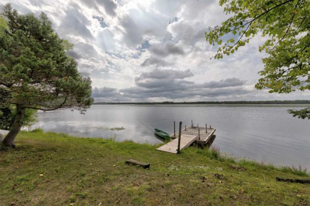 92 Bradley Bay Rd, Trent Hills, ON K0L 1L0 (#X4387801) :: Jacky Man | Remax Ultimate Realty Inc.