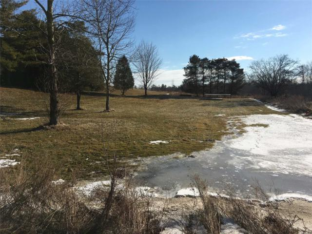4467A 20th Sdrd, Puslinch, ON N0B 2K0 (#X4389035) :: Jacky Man | Remax Ultimate Realty Inc.