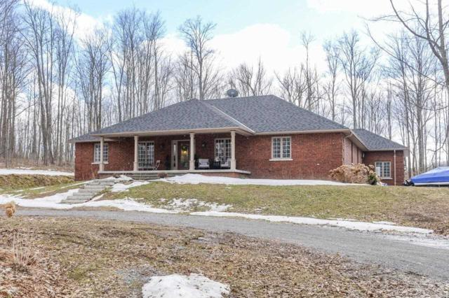 507 French Settlement Rd, Tweed, ON K0K 3J0 (#X4404731) :: Jacky Man   Remax Ultimate Realty Inc.