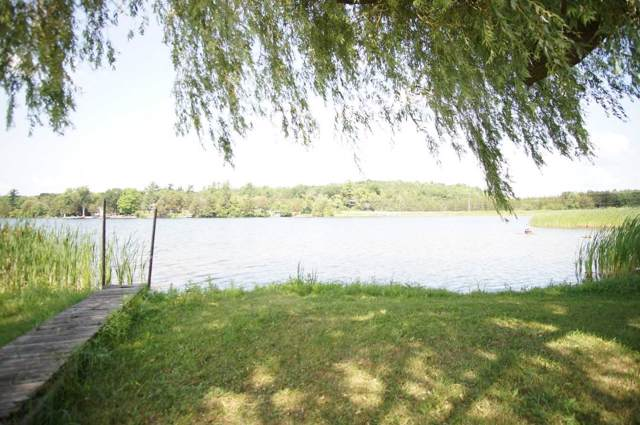 644 County Road 38 Rd, Trent Hills, ON K0L 1L0 (#X4531269) :: Jacky Man | Remax Ultimate Realty Inc.