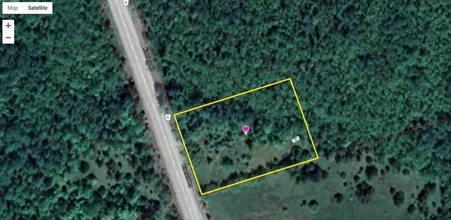 Ptlt 17 Con 8 Eldon Rd, Kawartha Lakes, ON K0M 2B0 (#X4868941) :: The Ramos Team