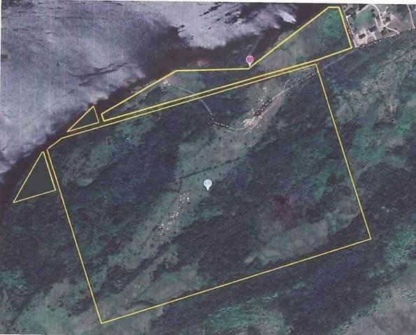 Con 6 Portage Rd, Kawartha Lakes, ON K0M 1B0 (#X4868965) :: The Ramos Team
