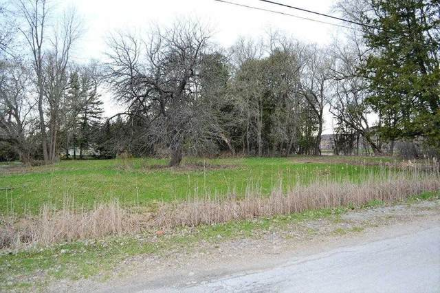Lot 1 Front & West St, Kawartha Lakes, ON K0M 1A0 (#X4888399) :: The Ramos Team