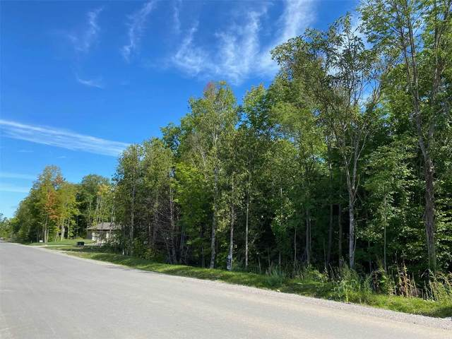 7 Rory Dr, Smith-Ennismore-Lakefield, ON K0L 2H0 (#X4898583) :: The Ramos Team