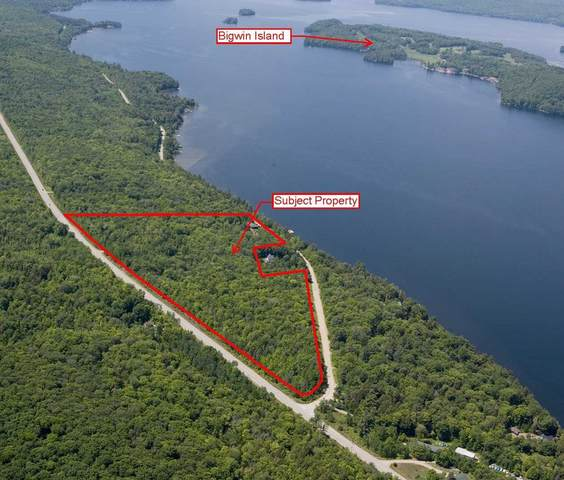 1462 Old Highway 117, Lake Of Bays, ON P0B 1A0 (#X4906986) :: The Ramos Team