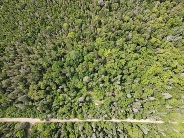 30th Line Rd, Algonquin Highlands, ON  (#X4913516) :: The Ramos Team