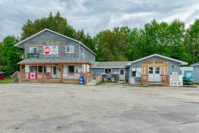 8193 County Road 503 Rd, Minden Hills, ON K0M 1X0 (MLS #X4913709) :: Forest Hill Real Estate Inc Brokerage Barrie Innisfil Orillia