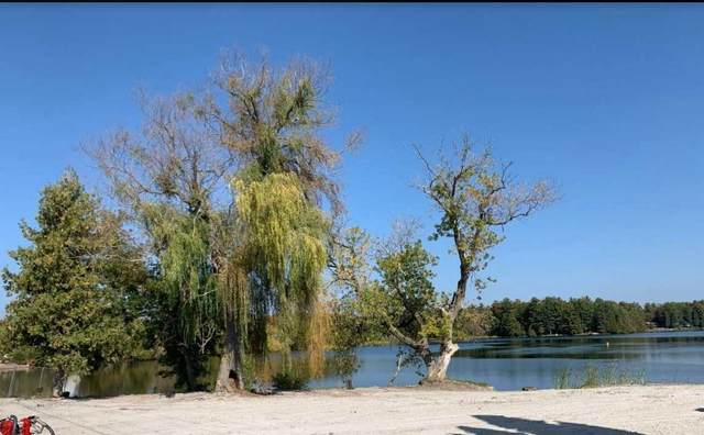 6672 Highway 35 Rd, Kawartha Lakes, ON K0M 1K0 (MLS #X4928657) :: Forest Hill Real Estate Inc Brokerage Barrie Innisfil Orillia