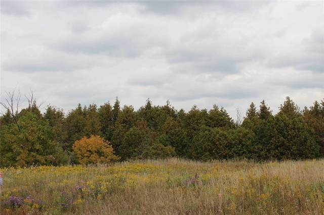 0 Cty Rd. 25  North Rd, East Luther Grand Valley, ON L9W 0L7 (MLS #X4935318) :: Forest Hill Real Estate Inc Brokerage Barrie Innisfil Orillia