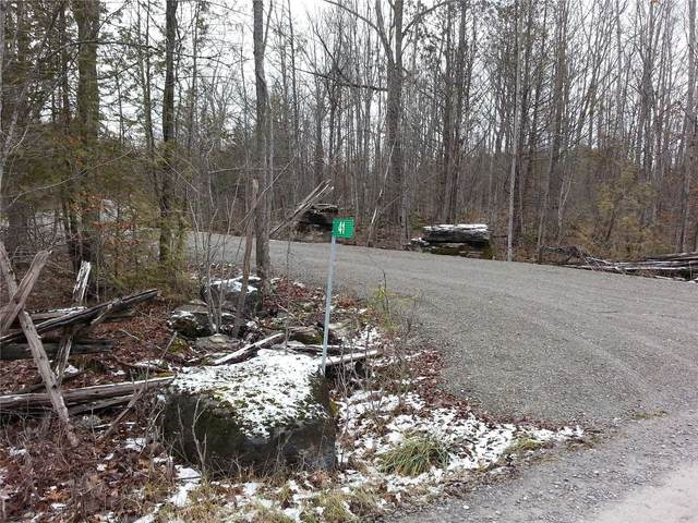 41 Stonehedge Rd, Stone Mills, ON K0H 2H0 (MLS #X5061072) :: Forest Hill Real Estate Inc Brokerage Barrie Innisfil Orillia