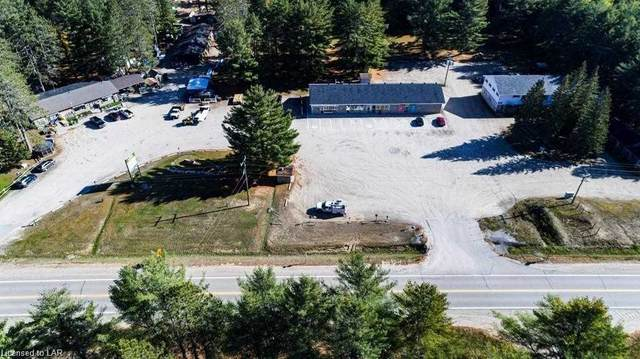 25846, N 25876,25864 Hwy 35, Lake Of Bays, ON P0A 1H0 (MLS #X5093282) :: Forest Hill Real Estate Inc Brokerage Barrie Innisfil Orillia