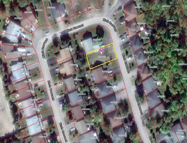 Lot 31 Birch Cres, Kawartha Lakes, ON K0M 1A0 (MLS #X5093398) :: Forest Hill Real Estate Inc Brokerage Barrie Innisfil Orillia