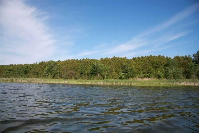000 Songbird Cres, Kawartha Lakes, ON K9V 0A9 (#X5095626) :: The Johnson Team