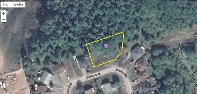 Lot 13 Birch Cres Cres, Kawartha Lakes, ON K0M 1A0 (MLS #X5098314) :: Forest Hill Real Estate Inc Brokerage Barrie Innisfil Orillia