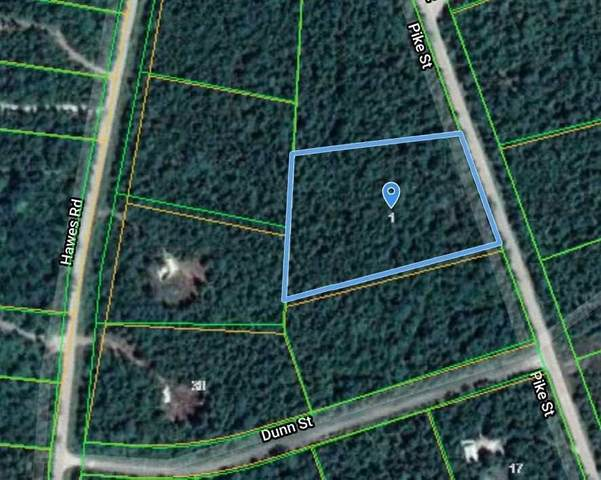 00 Lot 60 - Pike St, Northern Bruce Peninsula, ON N0H 1W0 (MLS #X5112517) :: Forest Hill Real Estate Inc Brokerage Barrie Innisfil Orillia