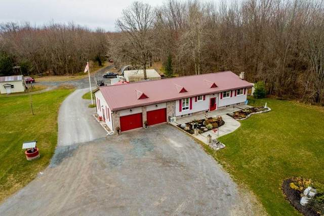 390 County Rd 40 Rd, Douro-Dummer, ON K0L 2V0 (MLS #X5115543) :: Forest Hill Real Estate Inc Brokerage Barrie Innisfil Orillia