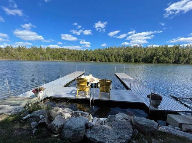18 Juniper Cres, Kawartha Lakes, ON K0M 1C0 (MLS #X5120105) :: Forest Hill Real Estate Inc Brokerage Barrie Innisfil Orillia