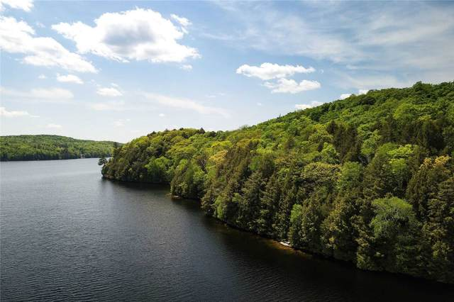 N/A Bear Island, Dysart Et Al, ON P0A 1E0 (MLS #X5120138) :: Forest Hill Real Estate Inc Brokerage Barrie Innisfil Orillia