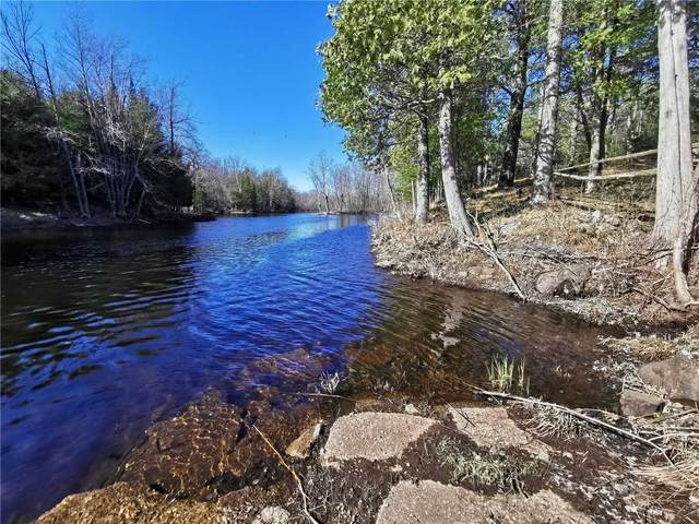6A Fire Route Rd, Havelock-Belmont-Methuen, ON K0L 1Z0 (MLS #X5125106) :: Forest Hill Real Estate Inc Brokerage Barrie Innisfil Orillia
