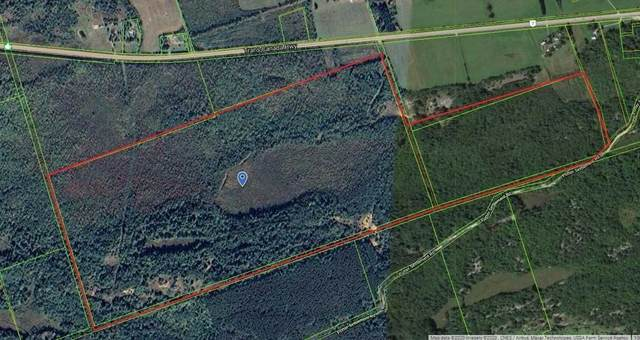 Lot 1 Concession 7, Tweed, ON K0K 3J0 (MLS #X5133882) :: Forest Hill Real Estate Inc Brokerage Barrie Innisfil Orillia