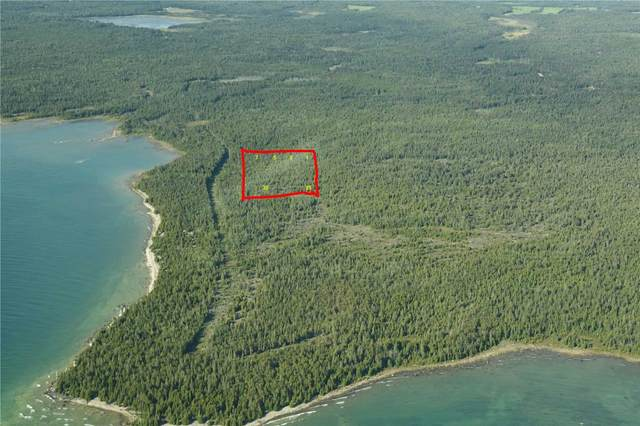 Lot 16 Carters Bay Rd, Central Manitoulin, ON P0P 1T0 (#X5216127) :: The Ramos Team