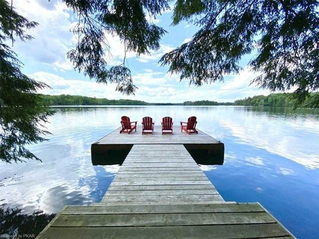 1847 Opeongo Point Rd, Central Frontenac, ON K0H 2K0 (#X5267951) :: The Ramos Team