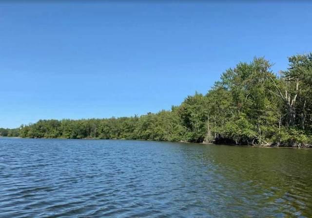 0 Lake Dalrymple Rd, Kawartha Lakes, ON L0K 1W0 (#X5278731) :: Royal Lepage Connect