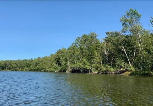 0 Lake Dalrymple Rd, Kawartha Lakes, ON L0K 1W0 (#X5278739) :: Royal Lepage Connect