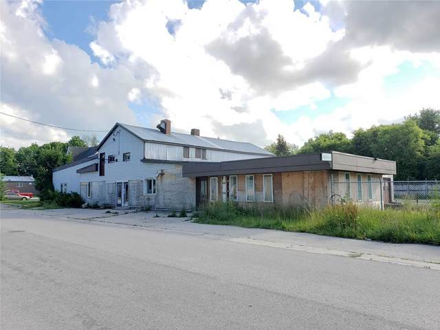 255 Norman St, Minto, ON N0G 2P0 (#X5294604) :: Royal Lepage Connect
