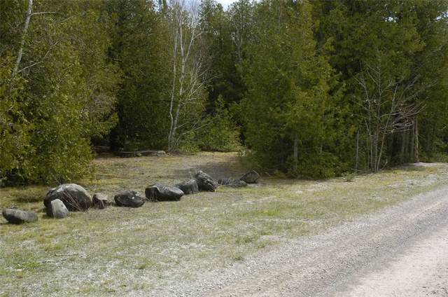 308 Ira Lake Rd, Northern Bruce Peninsula, ON N0H 1W0 (#X5307916) :: The Ramos Team